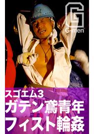 SM-ZV Vol.16 スゴエム3 奴隷三匹獄悶調教録 PART1 フィスト輪姦