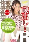 【VR専用】蔵出し!VRアイドル・小林メイの最初で最後のVRセックス 小林メイ